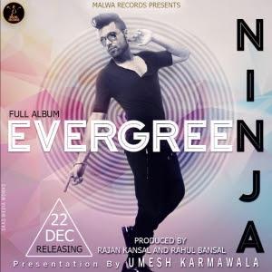 evergreen ninja