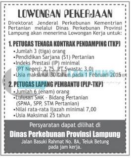 Kesempatan Berkarir di Dinas Perkebunan Provinsi Lampung