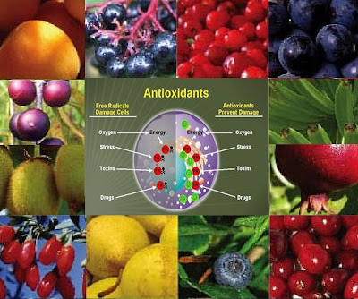 Things to know about Antioxidants