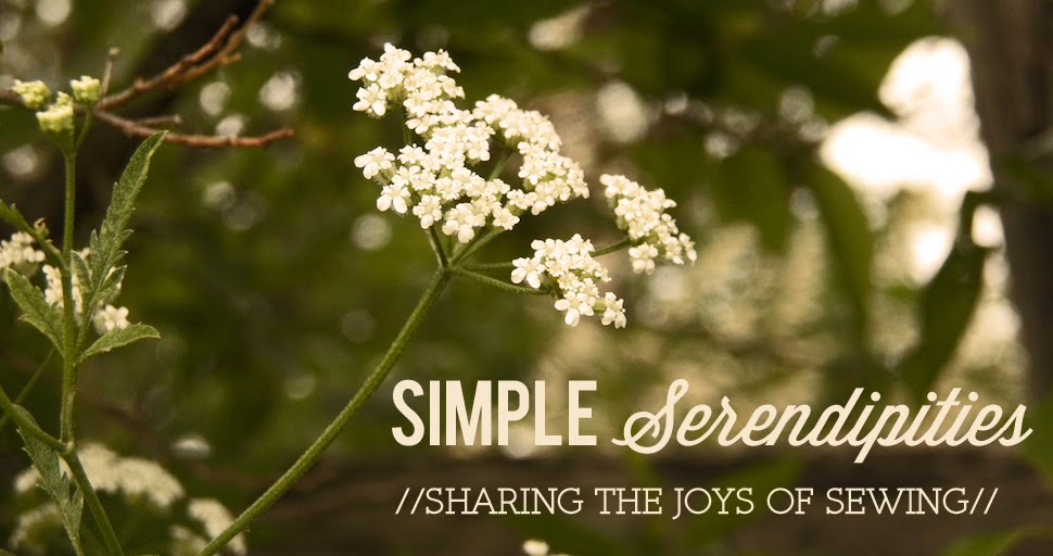 simple Serendipities