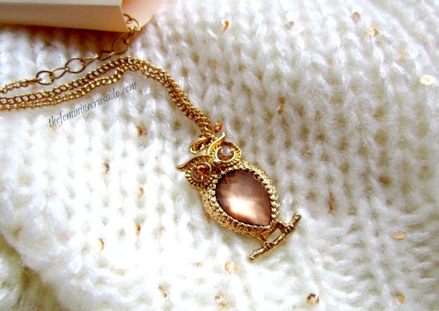 Picture of Forever 21 Owl Necklace