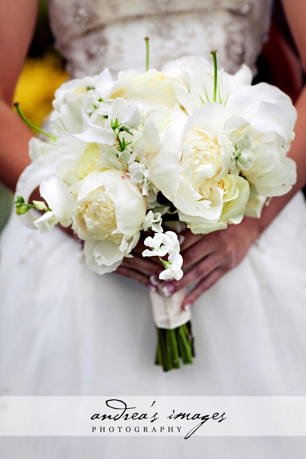 Carly & Ian: Vineyard Style Wedding | Visual Impact Design