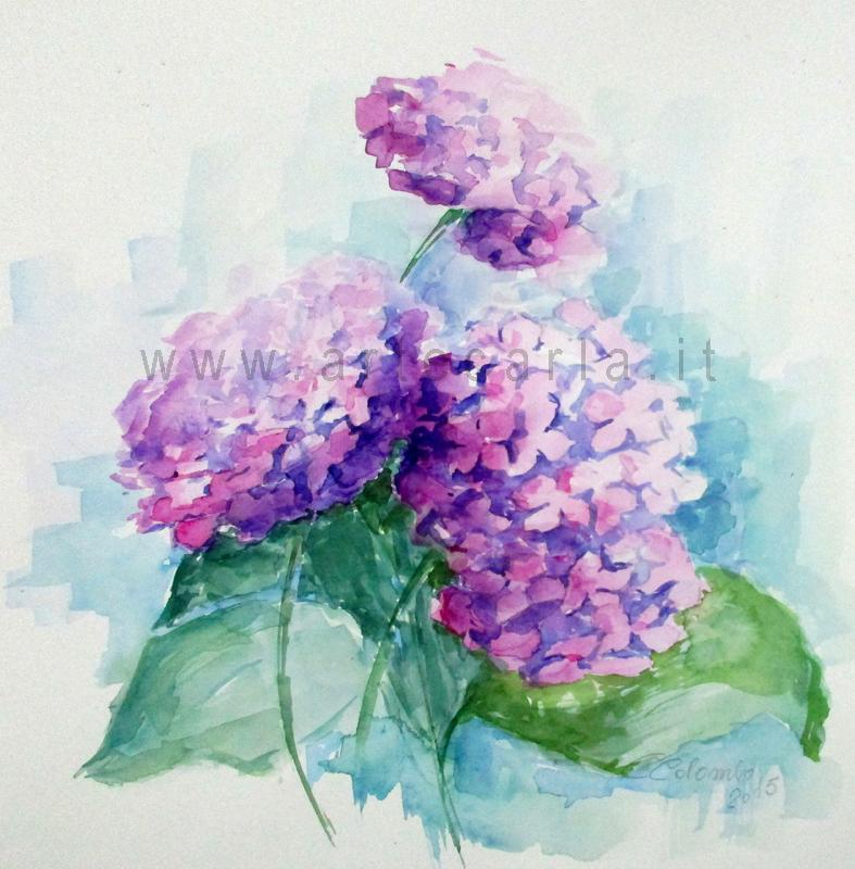 Quadri Con Ortensie : Artecarlacolombo fiori ad acquarello calle