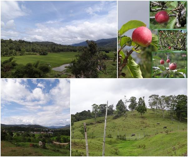 Sarawak Malaysia Borneo Our Backyard - Bakelalan