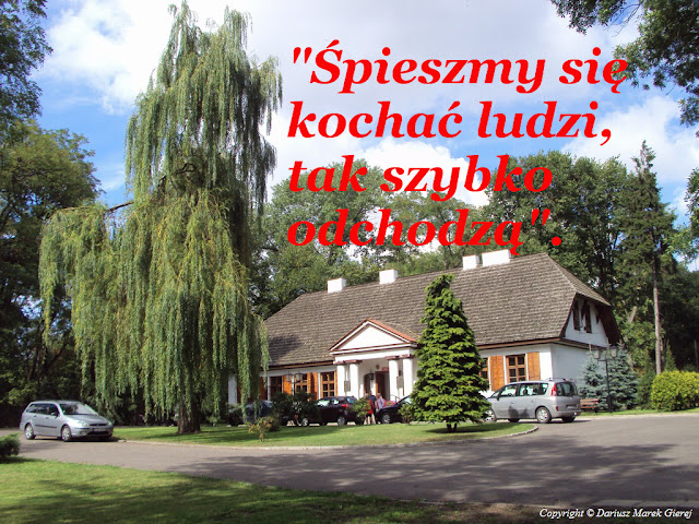 """""""Śpieszmy się kochać ludzi, tak szybko odchodzą"""". Fot Dariusz Marek Gierej"""