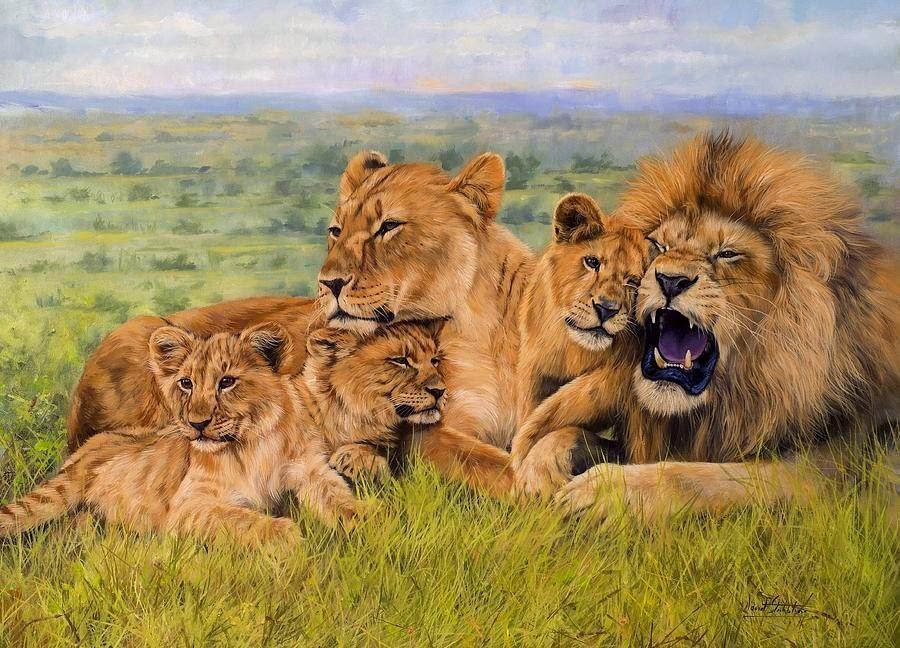 65654 - اجمل صور للأسد -  Photos of the Lion