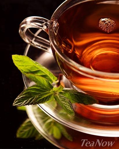 teanow instant tea