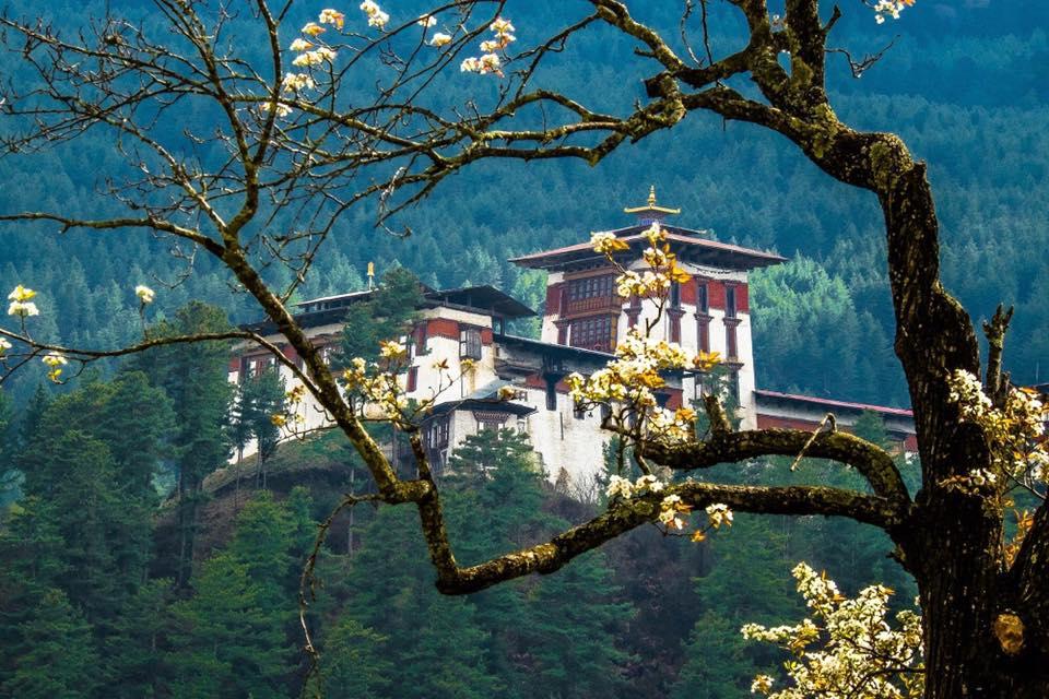 CHƯƠNG TRÌNH HÀNH HƯƠNG BHUTAN