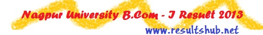 Nagpur University B.Com. First Year Summer 2013 Result