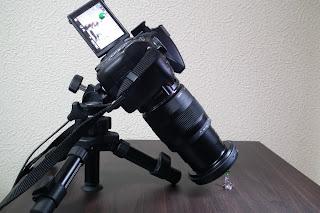 sigma 17-70mm kenkoテレコン