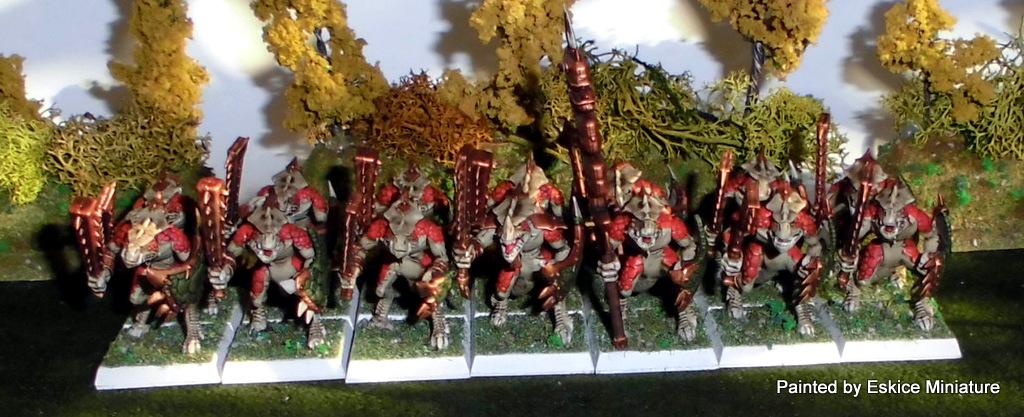 Armée Warhammer Battle 2-CIMG1397