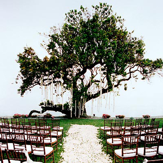 Wedding Inspiration Center: Beautiful Outdoor Wedding Reception