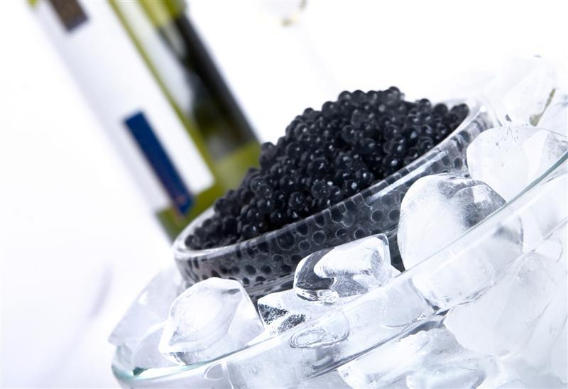Passion for luxury beluga caviar delecasy for Caviar comes from what fish