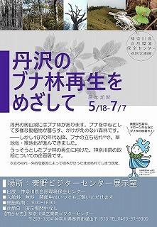 巡回展「丹沢のブナ林再生をめざして」