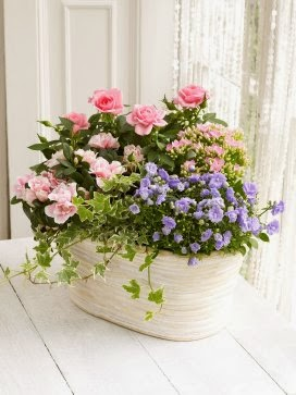 Flowers Online with price