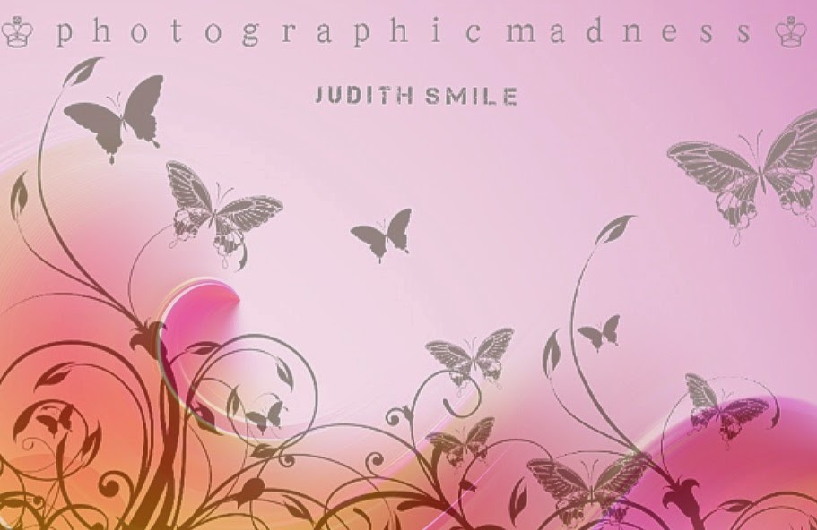 ♔ photographic      madness ♔