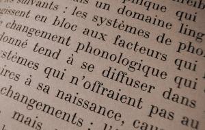 Parole Linguistics | RM.