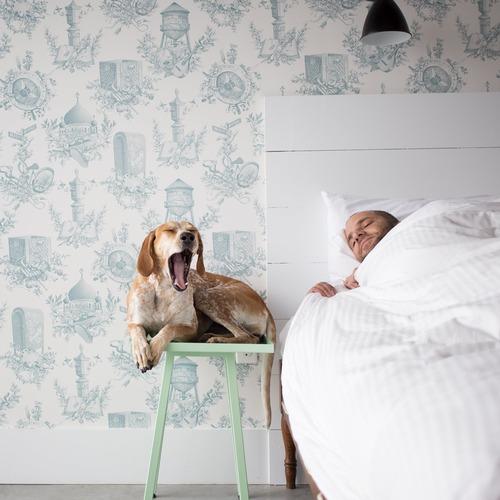 mise en scene de photos avec chien