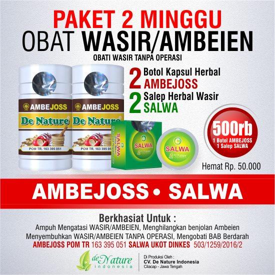 Paket Obat Herbal Wasir Hemoroid 2 Minggu