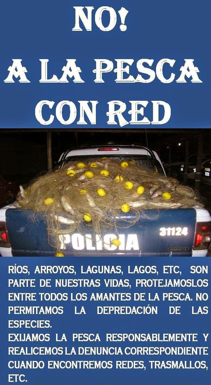 NO A LAS REDES...!!!!