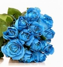One dozen Blue Roses bouquet