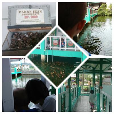 Melihat-Ikan-di-Masjid-Andi-Djuanna