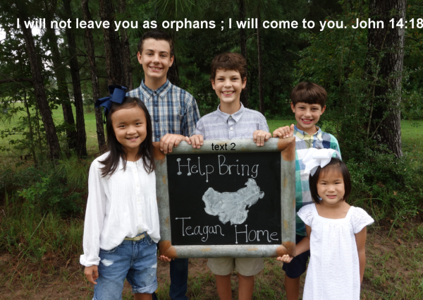 Be A Piece of Teagan's Story Click Picture to Donate