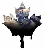 link to Canadian Environmental Policy & Record