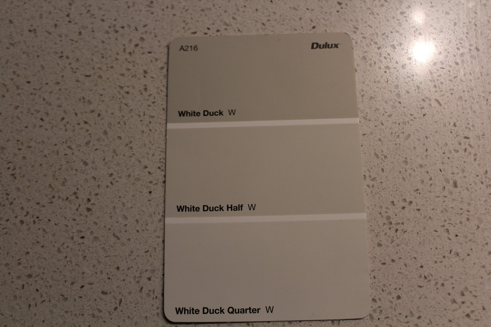 It S A New House Interior Colour Selection