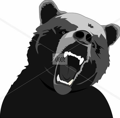 Black Bear Images  Pixabay  Download Free Pictures