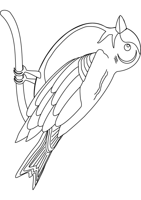 simple birds coloring pages