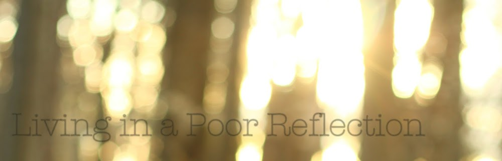 Living in a Poor Reflection