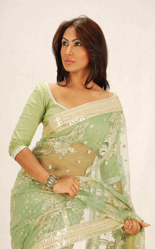 hot alisha pradhan in saree