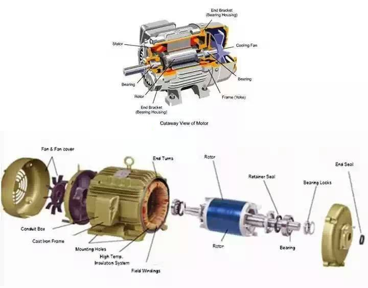Inside ac motor elec eng world for Ac and dc motor