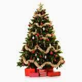 Pokok Krismas