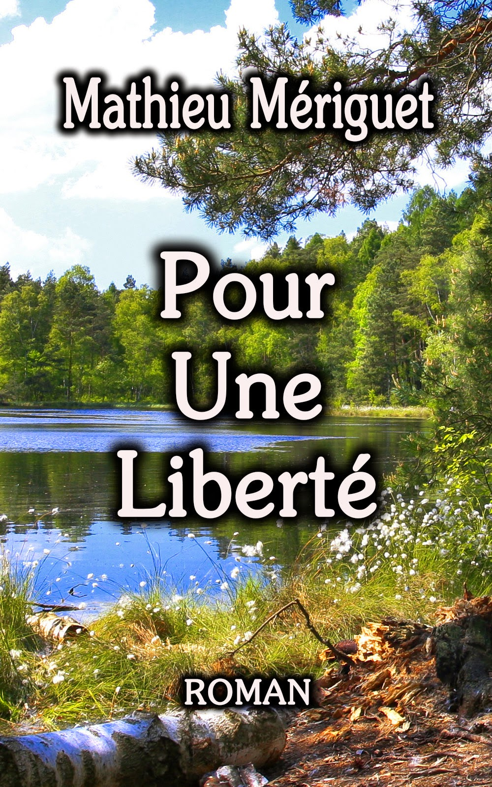 Pour une liberté - Mathieu Mériguet