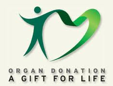 Derma Organ Secara Online