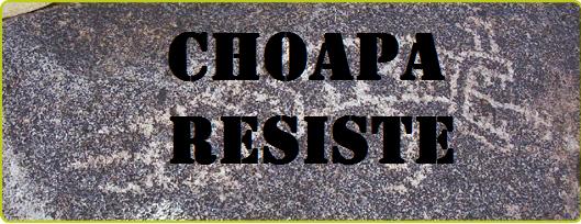 Choapa Resiste