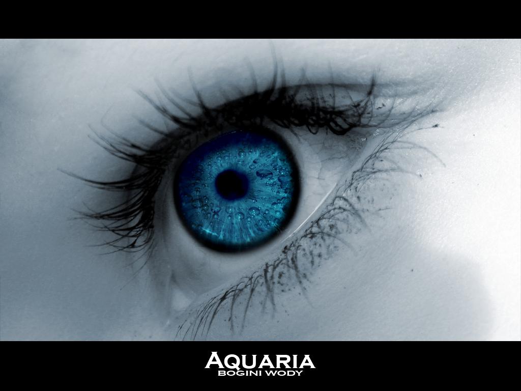 http://3.bp.blogspot.com/-yCEgtqoGvCQ/TZF3ytalFwI/AAAAAAAAClM/-9tEfzD8y3E/s1600/Aquaria_by_DrasT_X.jpg