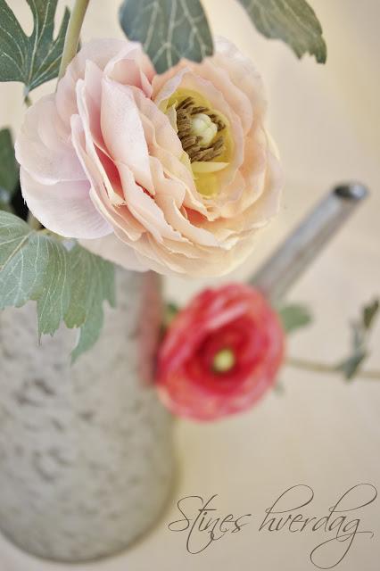 Kanne i sink med blomster