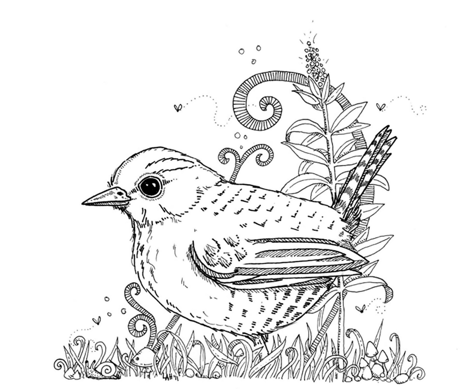 hedgie u0027s desk wren coloring sheet