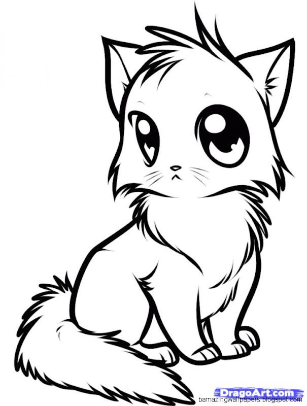 Cute Cat Drawings Step By