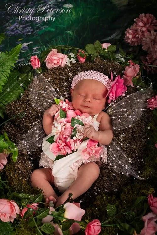 Images bébés mignons fées