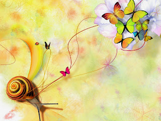 butterfly-wallpaper-and-background-cute-photo-butterfly-wallpaper.jpg
