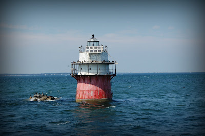 monstrous beauty elizabeth fama plymouth bug lighthouse