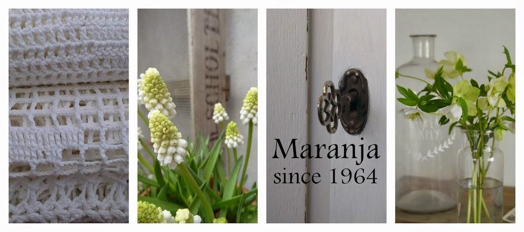 maranja.since1964