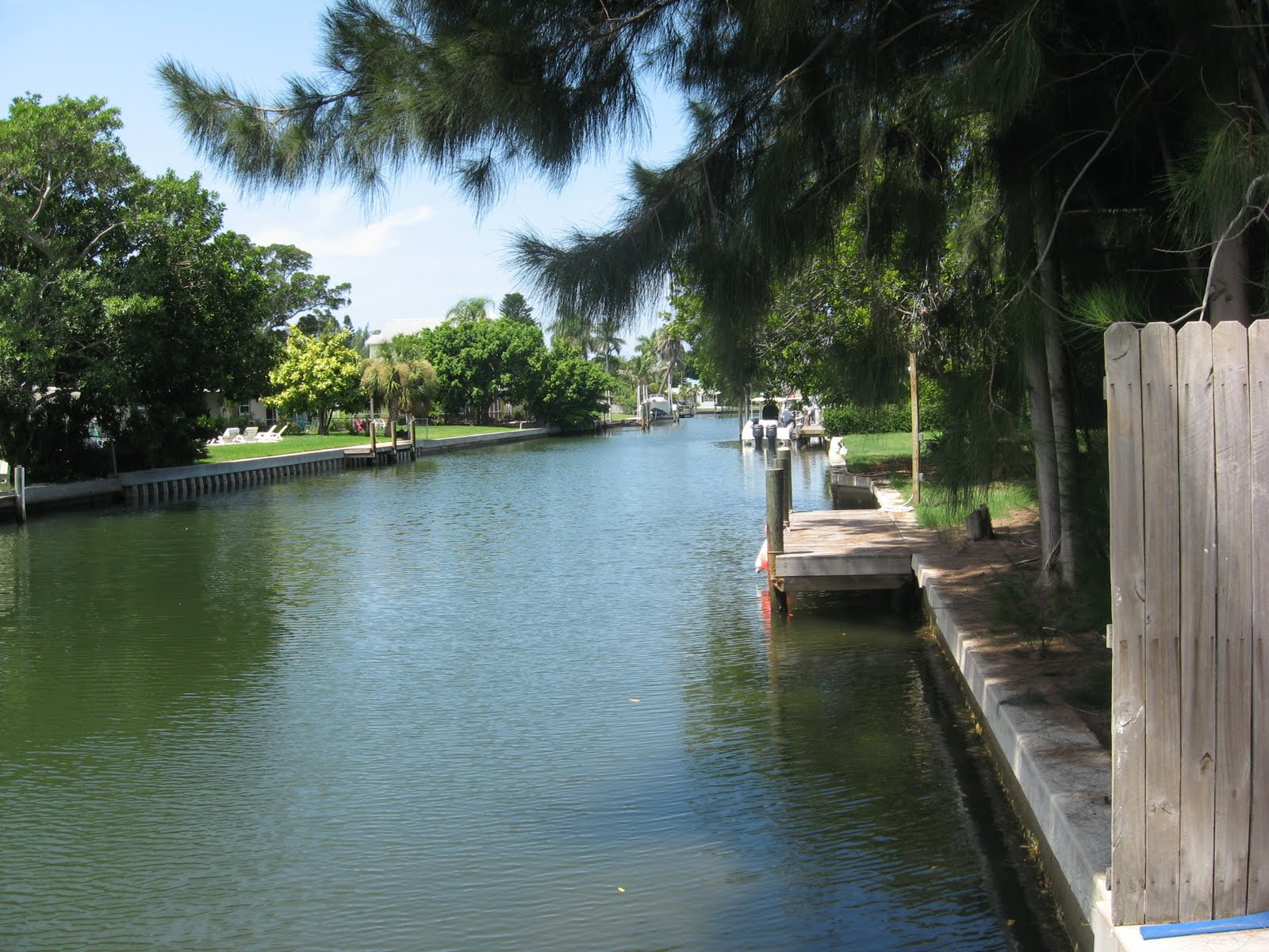 Saltwater fishing tips for the south florida fishing for Florida canal fishing