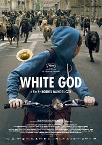 White God / Fehér isten