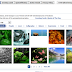 How to add animated photos pictures in Facebook notes