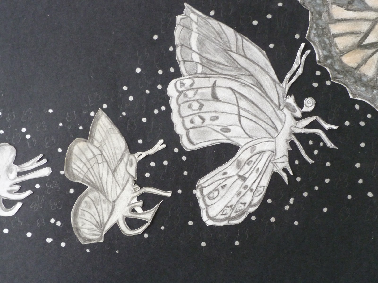 We Are Creative   Metamorphosis Drawing Project